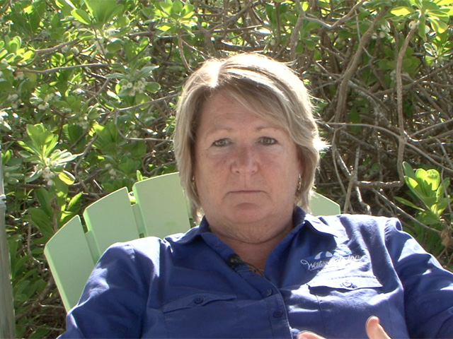 Debbie Sickels