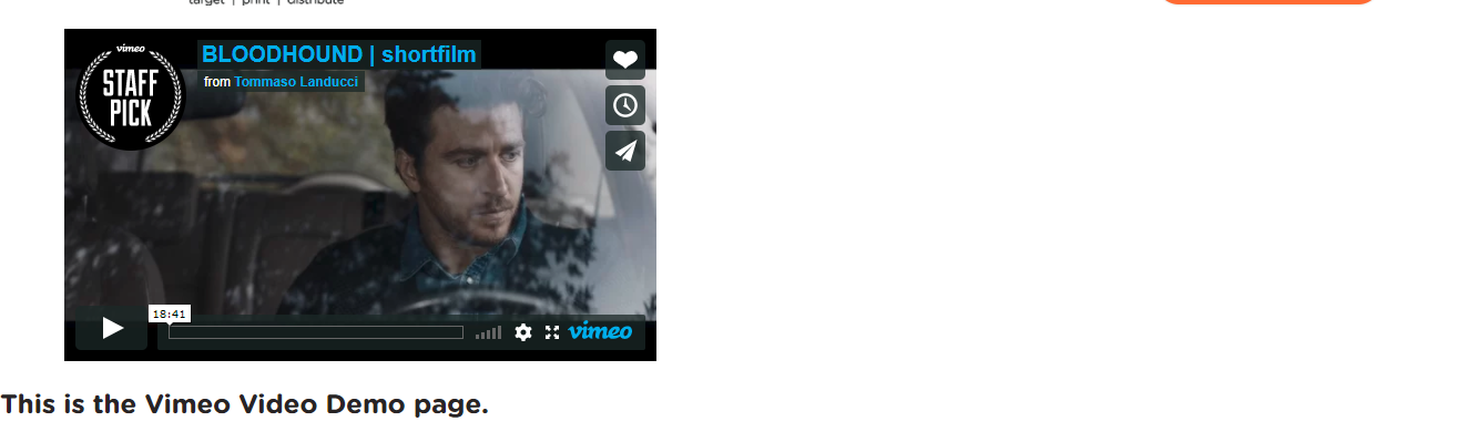 vimeo and youtube video background orchard cms
