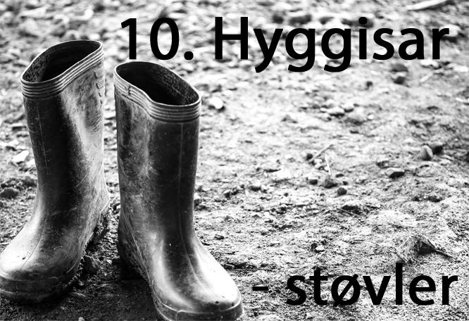 hyggisar1