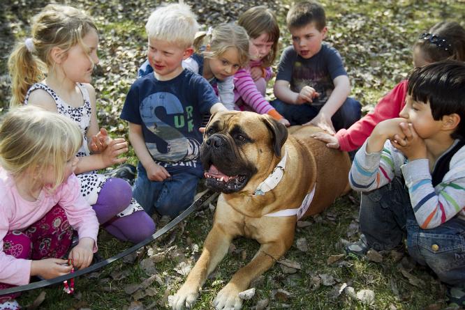 For de fleste familier vil barnehagen stige litt i pris.(Foto: Heiko Junge/NTB Scanpix)