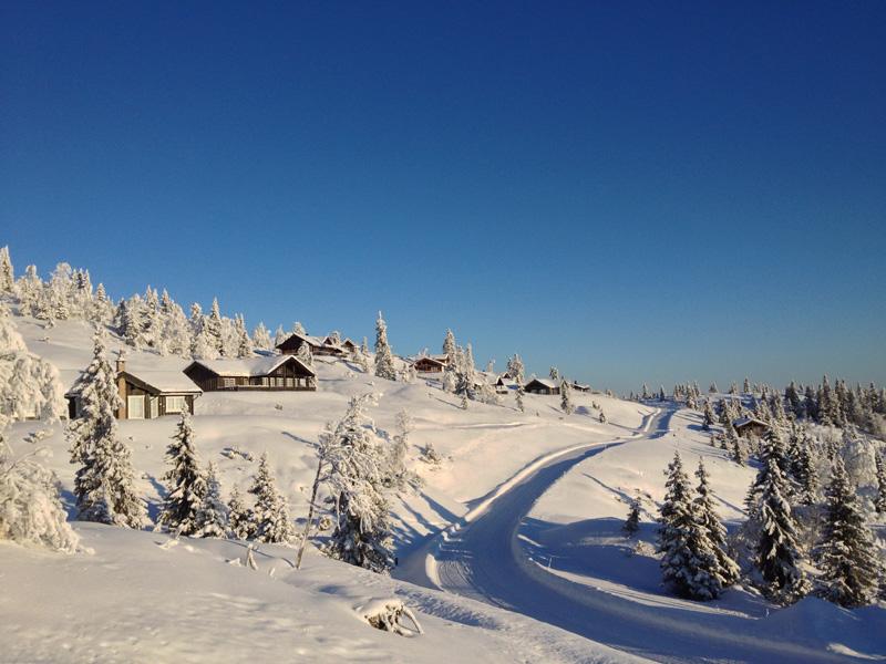 Ølnesseter Hyttegrend ligger i Sør-Aurdal kommune sør i Valdres med tomter helt opp til 1000 meter over havet. Området er en gammel setergrend hvor det fortsatt beiter både sauer og kuer om sommeren. Letteste adkomst er E16 til Bagn og derfra er det 11 kilometer opp til feltet. Fjellterrenget i området er snilt og egner seg svært godt både til ski, gåturer og sykling. Det som likevel skiller ut Ølnesseter mest er den fantastiske utsikten. Mange av tomtene har mer enn 180 graders utsikt. Hjemmeside: www.olnesseter.no