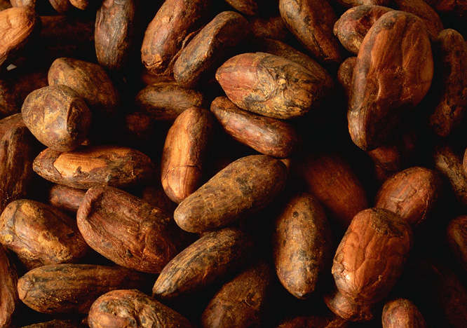 Flavonoidene i kakaobønner skal være bra for mye. (Foto: Colourbox)