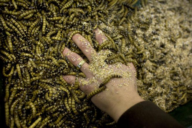 (Foto: Jerry Lampen/Reuters)