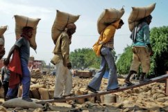 India workers