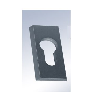 Tarczka drzwiowa AA50 F1 na wkładkę Anoda Lockpol