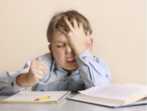 Problemi di apprendimento? Un aiuto arriva dai Fiori Australiani