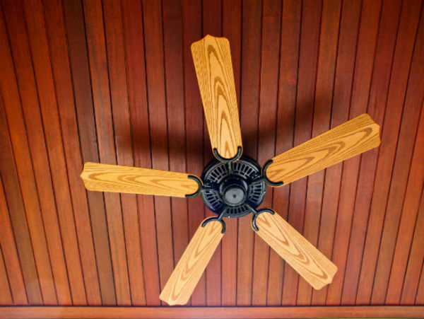 Ceiling fan buying guide ceiling fan mozeypictures Image collections
