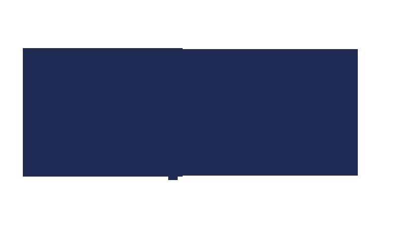 SFAMs fullmäktigemöte 2017