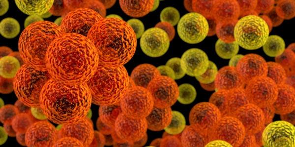 Superbug Smarts