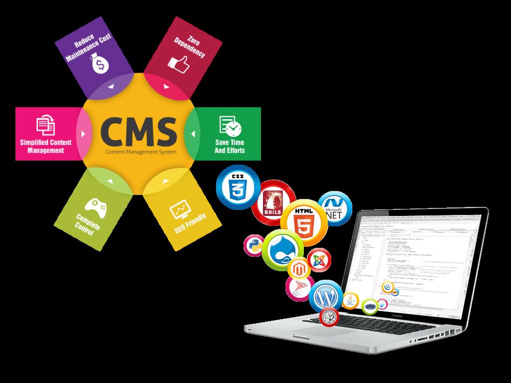Image result for CMS Development