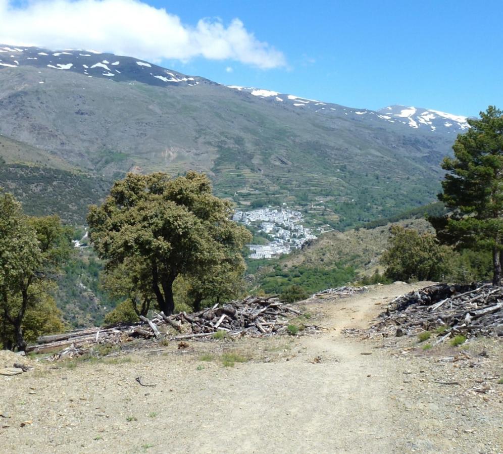 Finishing the Sulayr at Trevelez