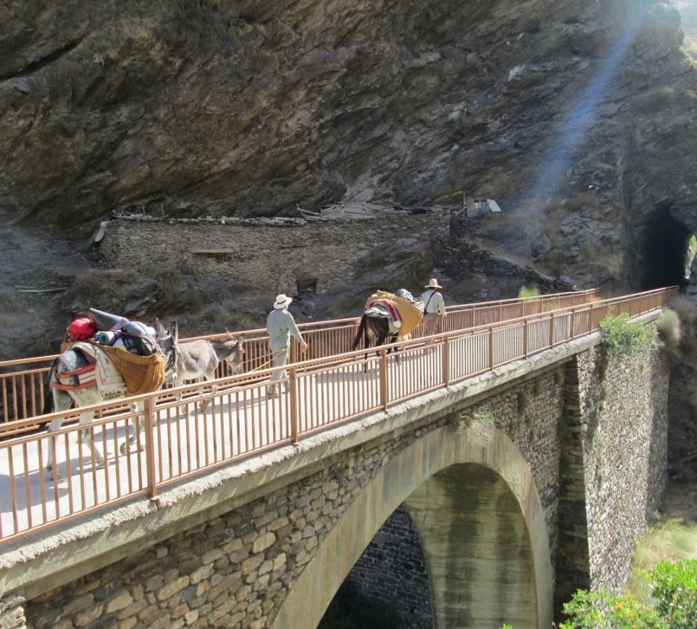 Lightweight Trekking with Mules Sierra Nevada