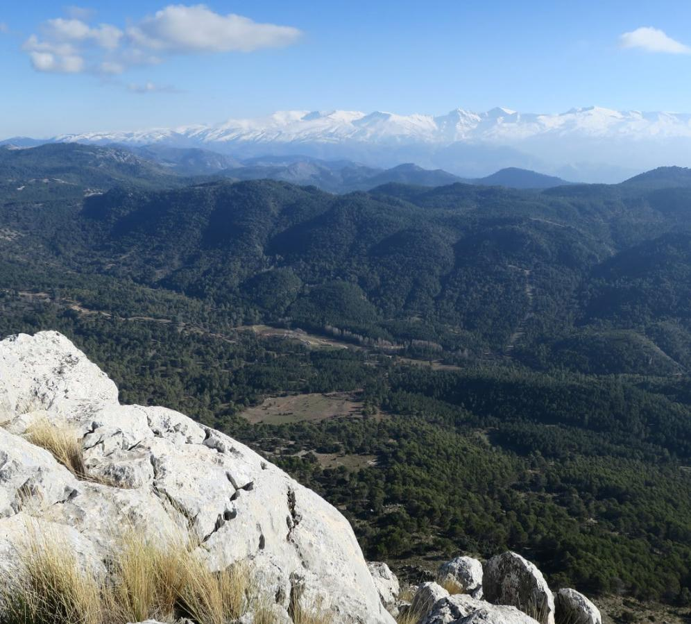 Views from Penon de la Mata