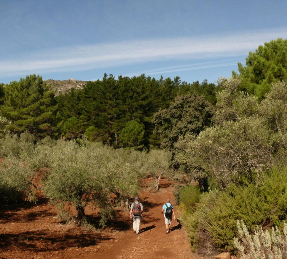 Walking in the Sierra Blanca