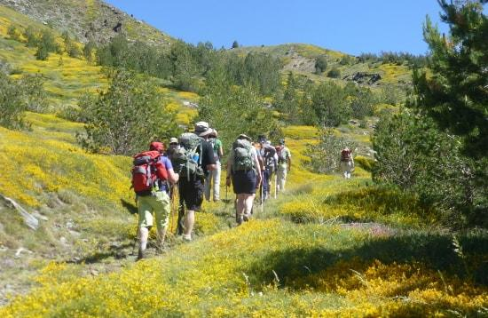 Walking and hiking tours Granada