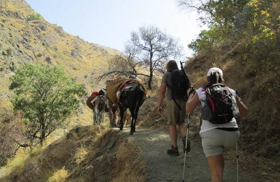 Sierra Nevada summer day tours