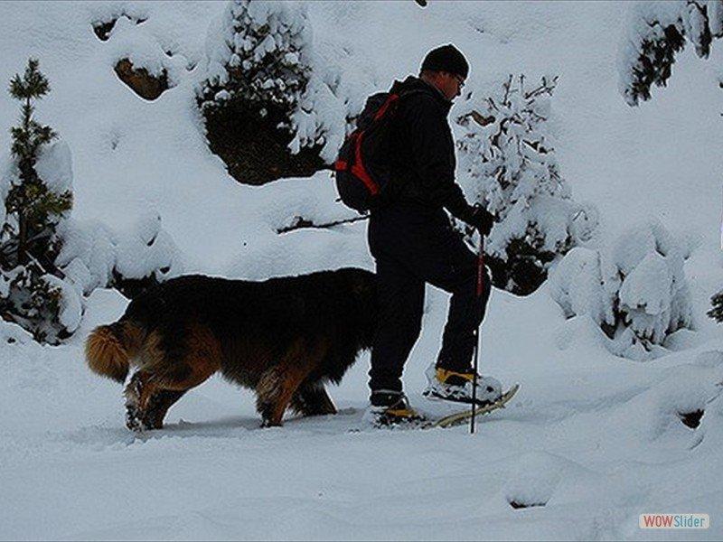 Deep snows_4358415511_m-min