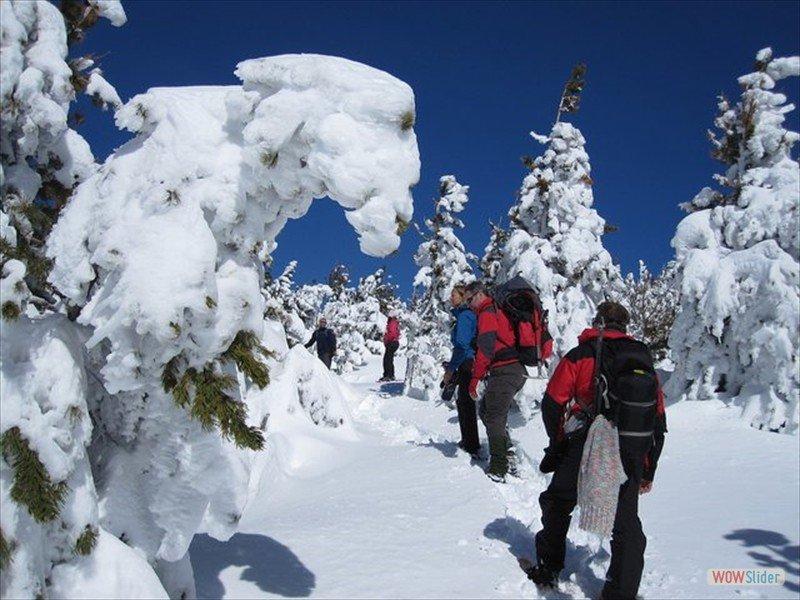 snowshoeing-poqueira-5_4379732386_l-min