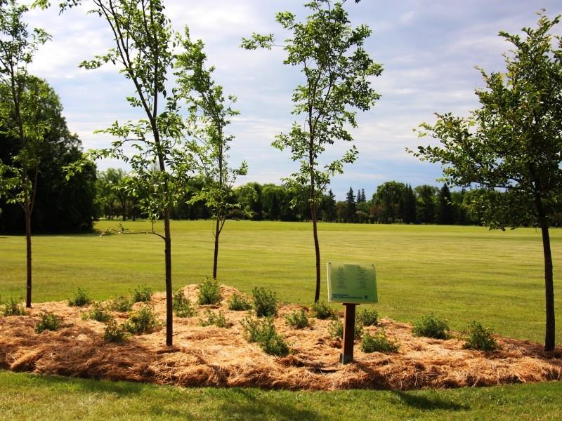 Assiniboine Park's Additional Gardens