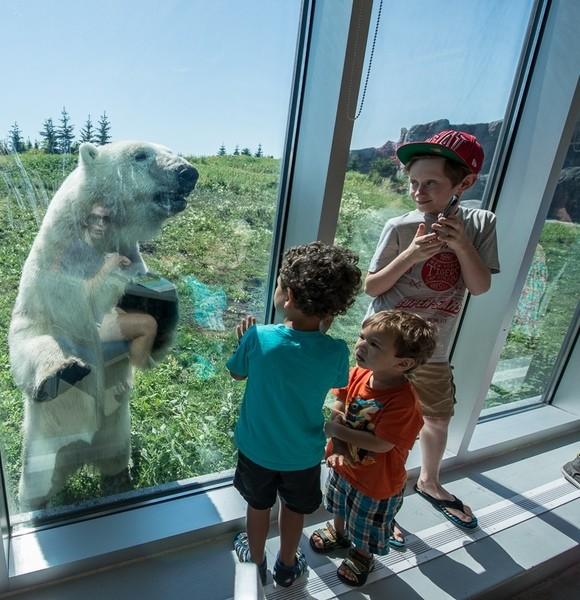 Tundra Grill (Assiniboine Park Zoo)