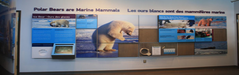 Leatherdale International Polar Bear Conservation Centre