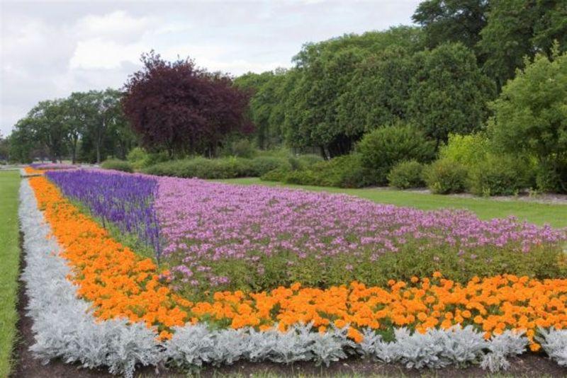 Formal Garden at Assiniboine Park
