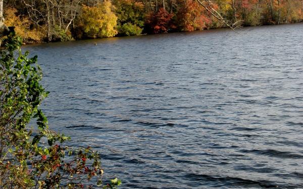 Fishing on long island discover long island for Freshwater fishing long island