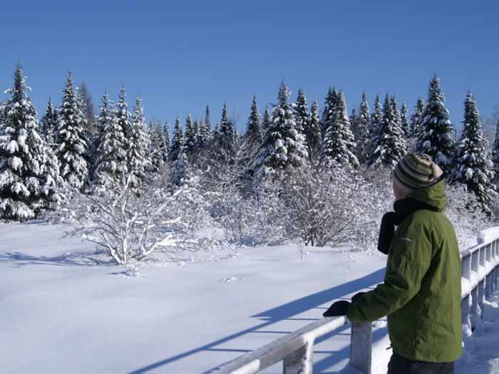 APEL - Association pour la protection de l'environnement du lac Saint-Charles et des Marais du Nord