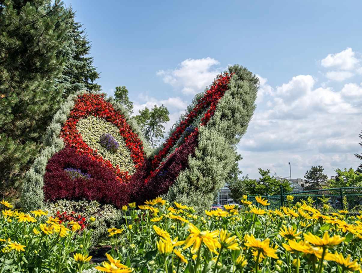 Laval university roger van den hende garden hiking for Jardin universitaire