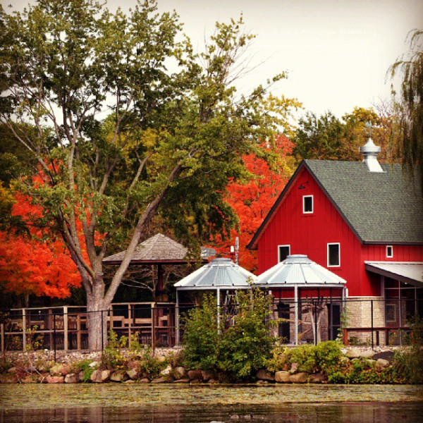 We can't get enough of the fall color!