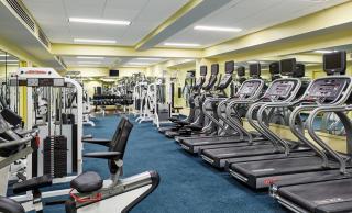 �Fitness