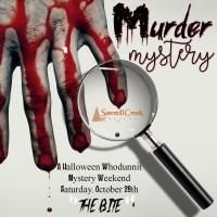 �murder-mystery-2017�/