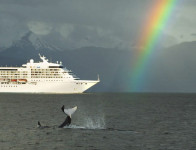 Orca at the Rainbow's End Gastineau Guiding Co