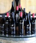 Plan B Wine Cellars
