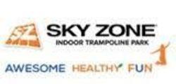 Sky Zone Ventura