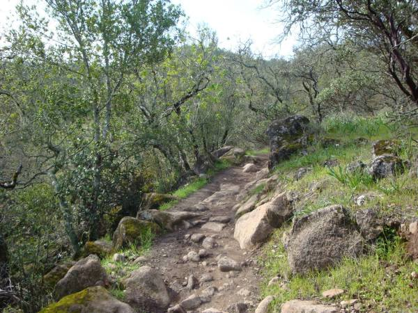 Trione-Annadel State Park | Sonoma County (Official Site)