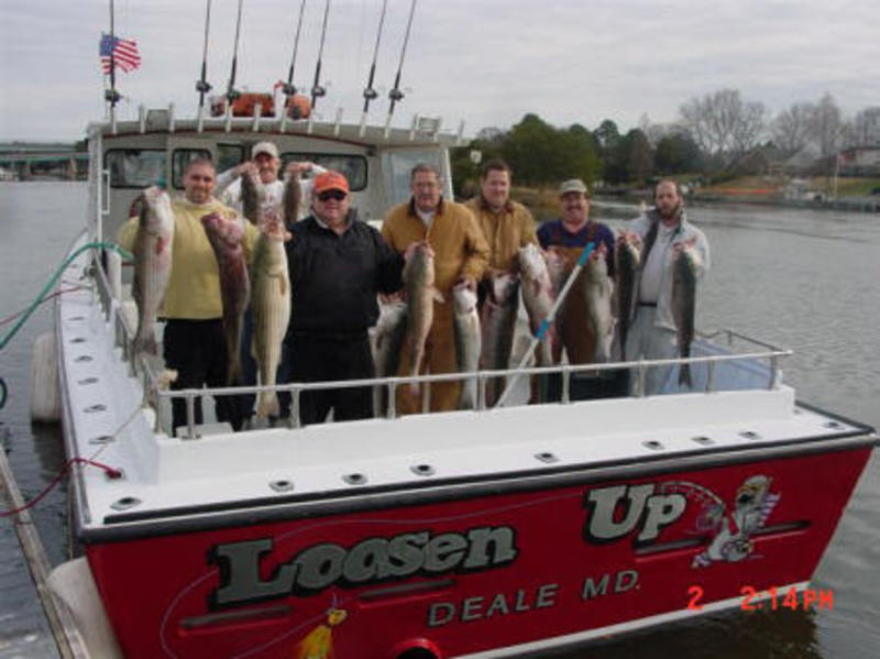 LoosenUp Charter Fishing