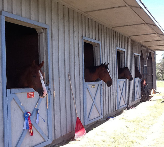 "<a href=""/attractions/cooperstown-equestrian-park-and-rental-home"">Cooperstown Equestrian Park and Rental Home</a>"