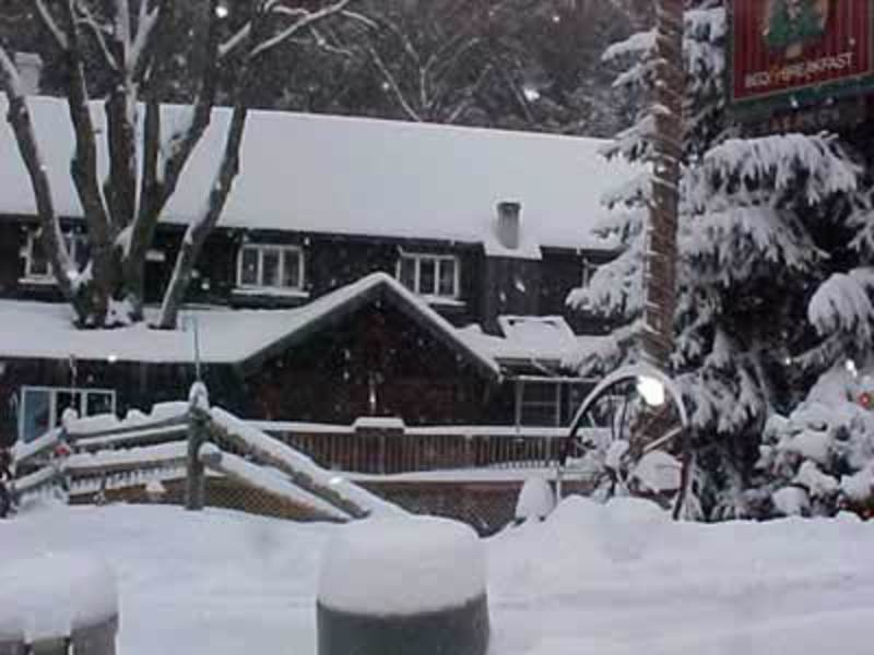 Whisperin' Pines Chalet