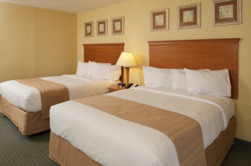 Quality Inn & Suites - Marina District Area