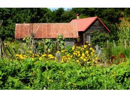 �Farm