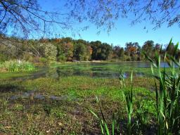 �Lake