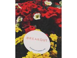 �Breakout