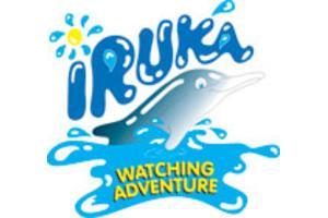 Iruka Logo