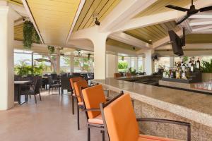 Hilton Tree Bar 2