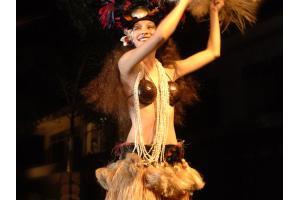 Tropics Dancer