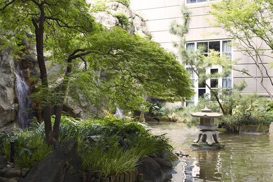 ACVB_garden.jpg