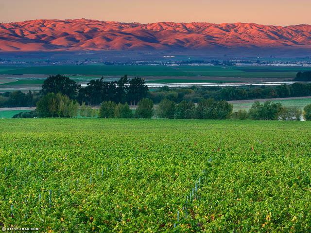 Sunset over Salinas Valley Vineyards, property of Steve Zmak