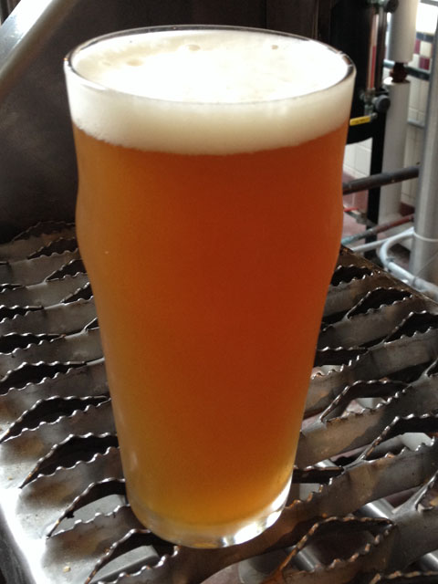 Citra IPA August 2014