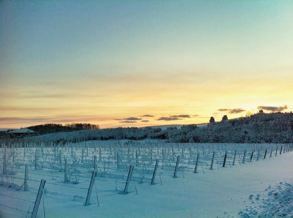 Sunrise at 45 North